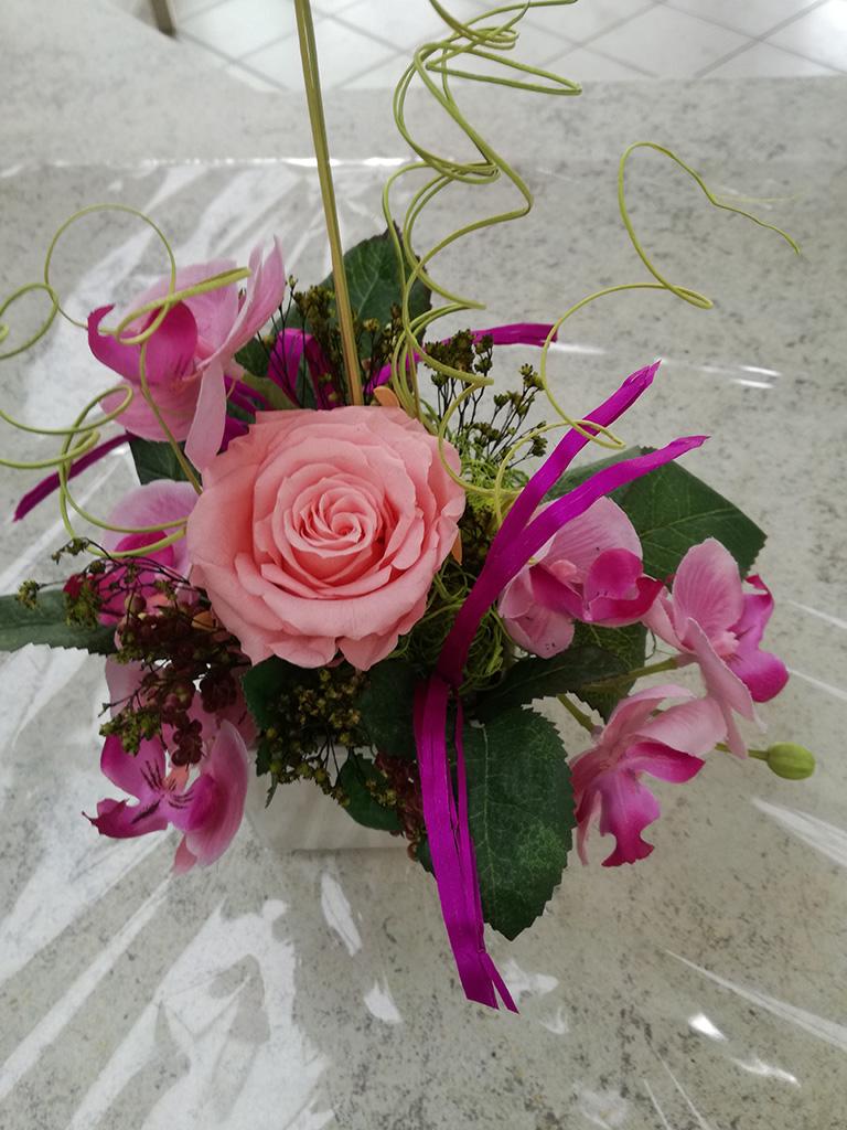 floristik01